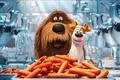 Picture cinema, wallpaper, happy, food, dog, cartoon, movie, film, happiness, pet, Max, sugoi, subarashii, official wallpaper, ...