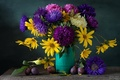 Picture bird, plum, asters, butterfly, still life, flowers