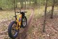 Picture path, mountain biking, navigation, forest, autumn, sports