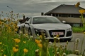 Picture flowers, Audi R8, road, car, supercar, four-wheel drive, mid-engined, house, dandelions, the sky, grass, clouds