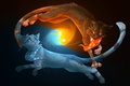 Picture animals, Yin-Yang, water, cats, black background, fire