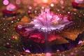 Picture carpet, drops, bloom, flower