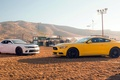 Picture Chevrolet, muscle car, Ford