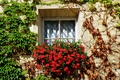 Picture flowers, flowers, Italy, plants, Italia, finestra, Window