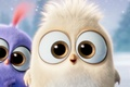 Picture cinema, animation, game, design, bird, young, eyes, wings, feathers, snow, movie, film, yuki, cute, Angry ...