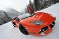 Picture view, Lamborghini LP700-4 Aventador, snow, pug, sports car