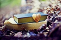 Picture autumn, forest, leaves, love, nature, Park, heart, books, love, forest, nature, heart, park, autumn, old, ...