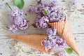 Picture flowers, flowers, lilac, waffle cone, waffle cones, lilac