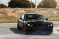 Picture Dodge, Challenger, Black, Series, Hellcat, SRT, Track, Spec, ADV5.0, Bronze CS