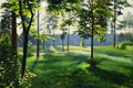 Picture canvas, oil, light, day, trees, road, grass, Lutsenko, painting, summer 2, the sun, landscape, clearing, ...