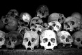 Picture black and white, composition, skull, bones