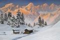 Picture Alps, .Winter, snow, mountains, gold, tree, Alois Arnegger, landscape