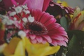Picture flowers, gerbera, bouquet