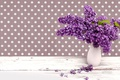 Picture vase, lilac, spring