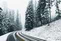 Picture winter, road, snow, forest, nature