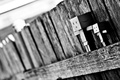 Picture macro, box, the fence, black and white, blur, danbo