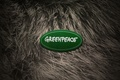 Picture animals, 2012, naked, fur, greenpeace, new year, girl, Greenpeace, wool, logo