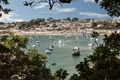 Picture trees, England, yachts, panorama, boats, harbour, England, Cornwall, Cornwall, RAID, St Mawes, St Mawes
