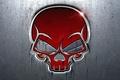 Picture sake, metal, red, metal, Skull