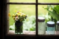Picture flowers, banks, window