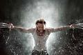 Picture Wolverine, Hugh Jackman, X-Men, Origins, Logan, Hugh Jackman