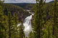 Picture forest, trees, river, waterfall, Wyoming, panorama, Wyoming, Grand Canyon, Yellowstone National Park, Yellowstone national Park, ...