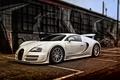 Picture Super Sport, 2010, Bugatti, Bugatti, US-spec, Veyron, Veyron