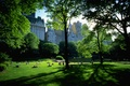 Picture new York, Park, stay