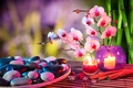 Picture stones, candle, bamboo, Spa, Orchid, cinnamon, flower
