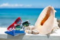 Picture accessories, vacation, glasses, sun, beach, sea, blue sky, summer, shells