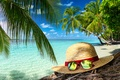 Picture hat, glasses, vacation, beach, beach, sea, sand, sea, sand, summer, summer